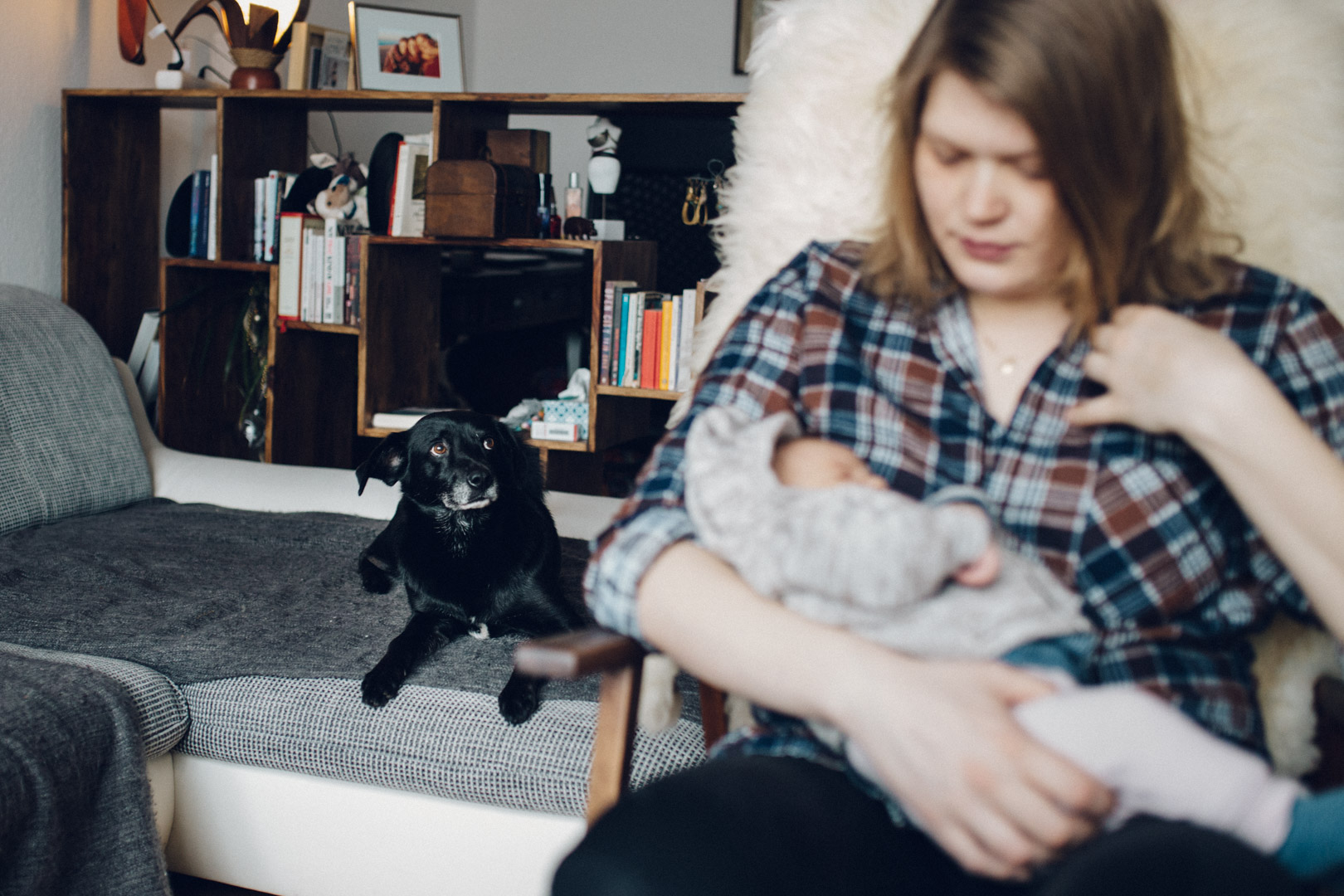 Neugeborenenfotos Berlin Familienreportage Berlin-Wedding: Mutter mit Neugeborenem auf dem Arm. Hund im Hintergrund auf dem Sofa
